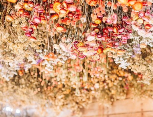 DRIED FLOWER LOVERS